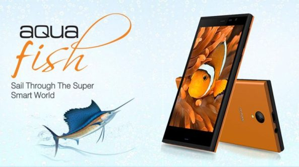 1intex-aqua-fish