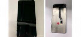 Samsung Galaxy S10 : l'écran apparaît sur la toile